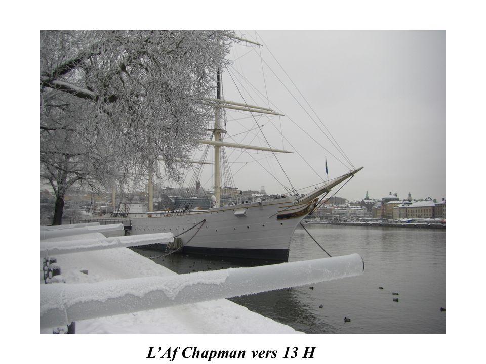 Sur la baltique gelée le matin à 9 H 30