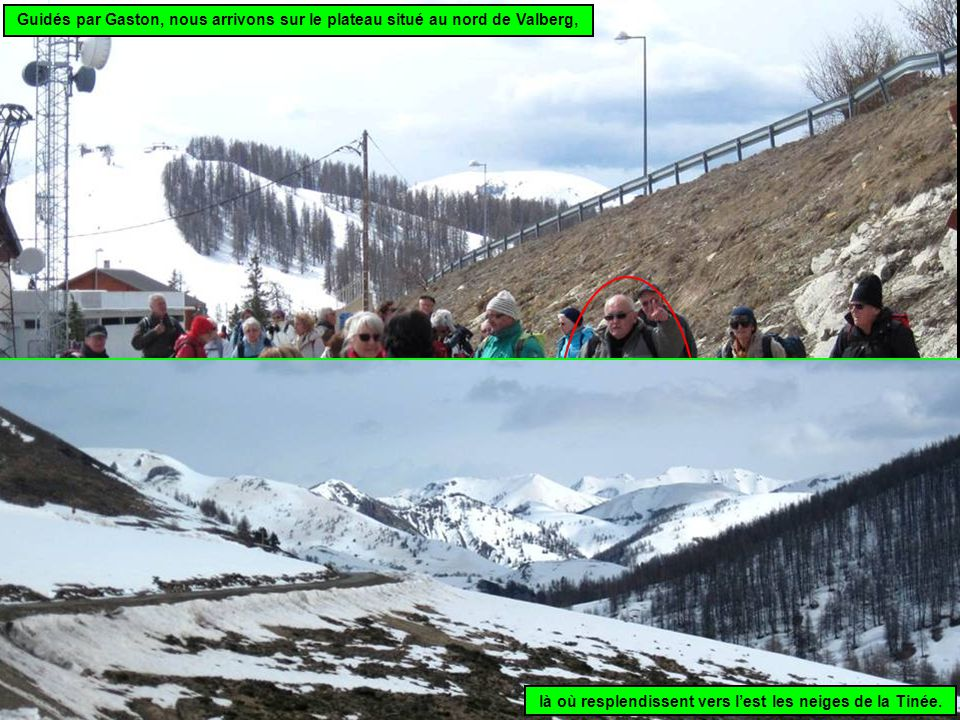 Guidés par Gaston, nous arrivons sur le plateau situé au nord de Valberg, là où resplendissent vers l'est les neiges de la Tinée.