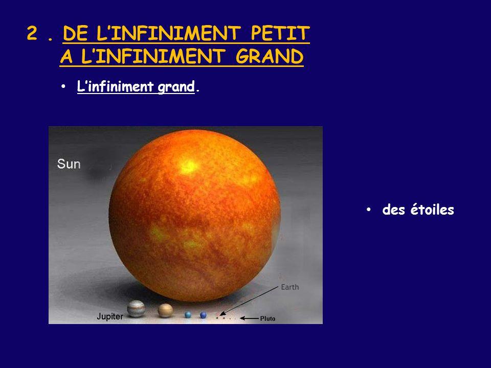 2. DE L'INFINIMENT PETIT A L'INFINIMENT GRAND des étoiles L'infiniment grand.