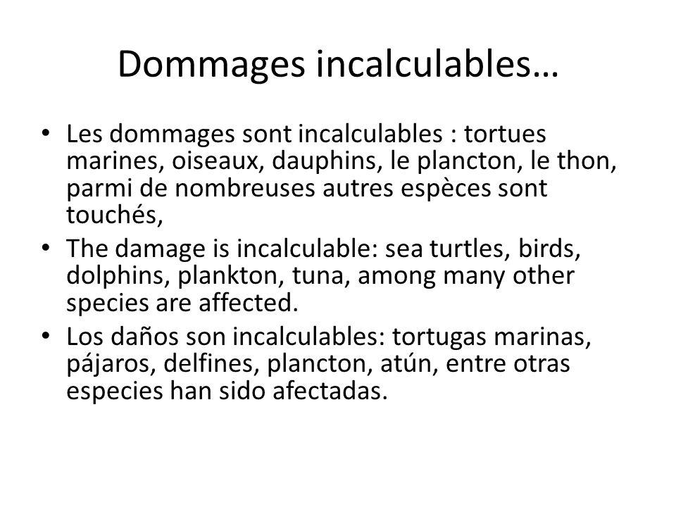 Dommages incalculables… Les dommages sont incalculables : tortues marines, oiseaux, dauphins, le plancton, le thon, parmi de nombreuses autres espèces sont touchés, The damage is incalculable: sea turtles, birds, dolphins, plankton, tuna, among many other species are affected.