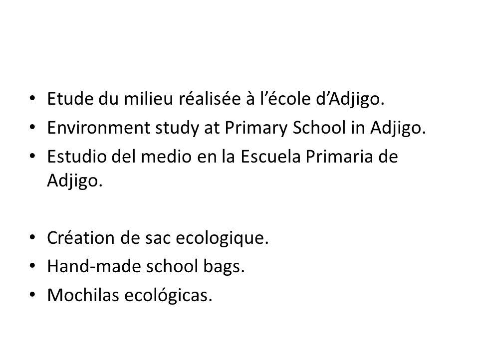 Etude du milieu réalisée à l'école d'Adjigo. Environment study at Primary School in Adjigo.