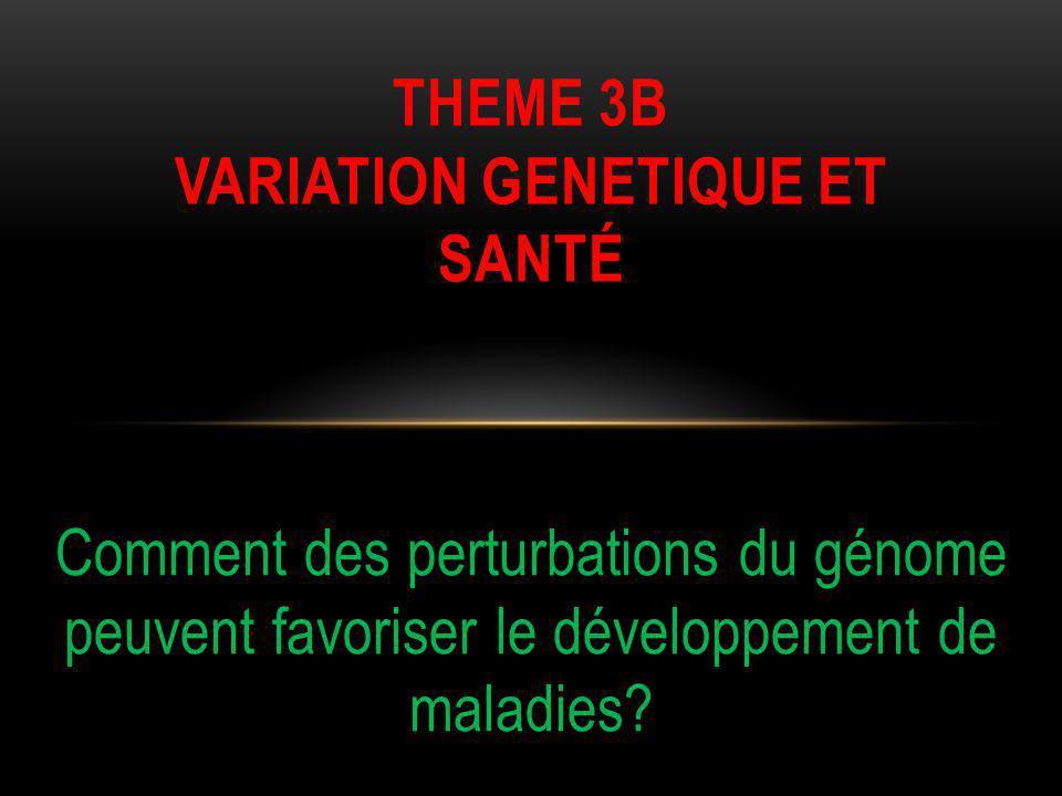 Comment des perturbations du génome peuvent favoriser le développement de maladies.