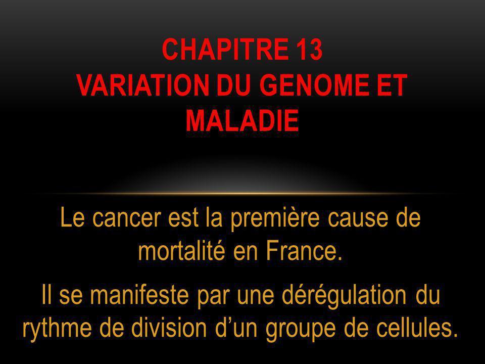 Le cancer est la première cause de mortalité en France.