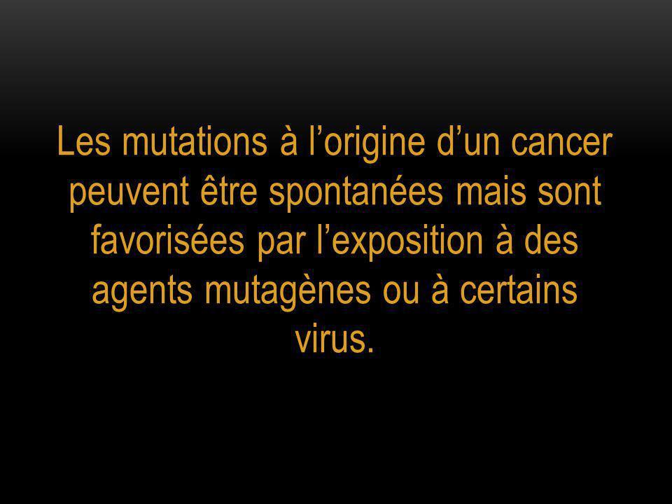 Les mutations à l'origine d'un cancer peuvent être spontanées mais sont favorisées par l'exposition à des agents mutagènes ou à certains virus.