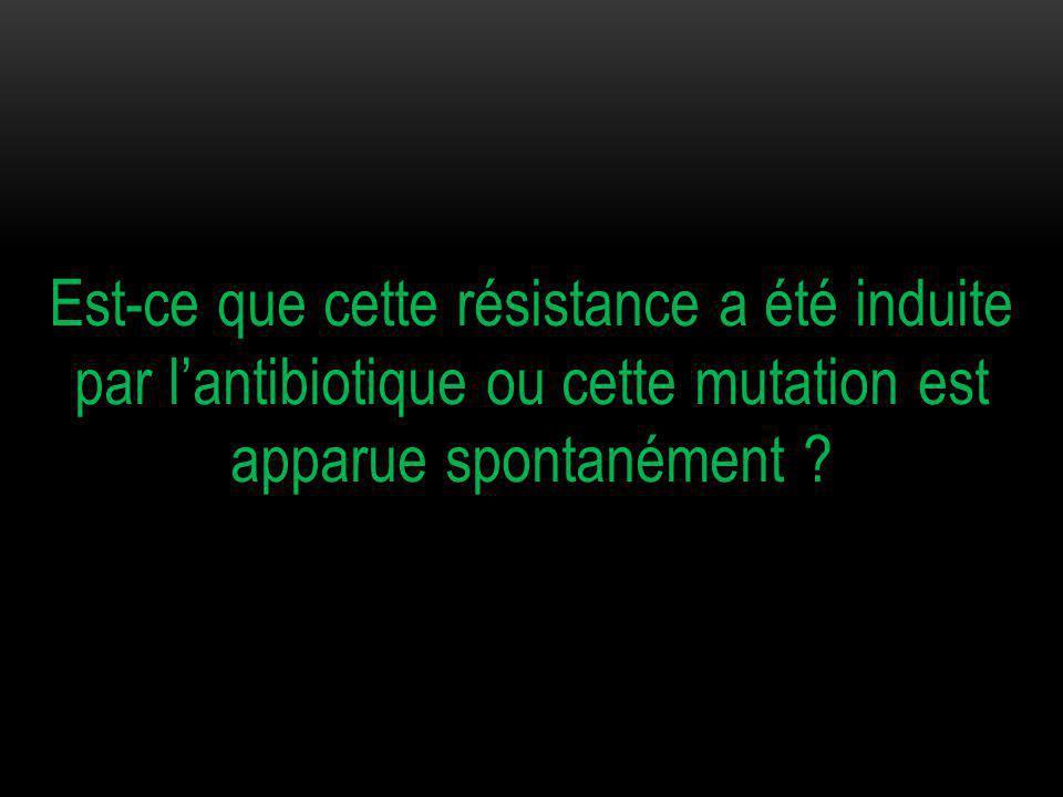 Est-ce que cette résistance a été induite par l'antibiotique ou cette mutation est apparue spontanément ?