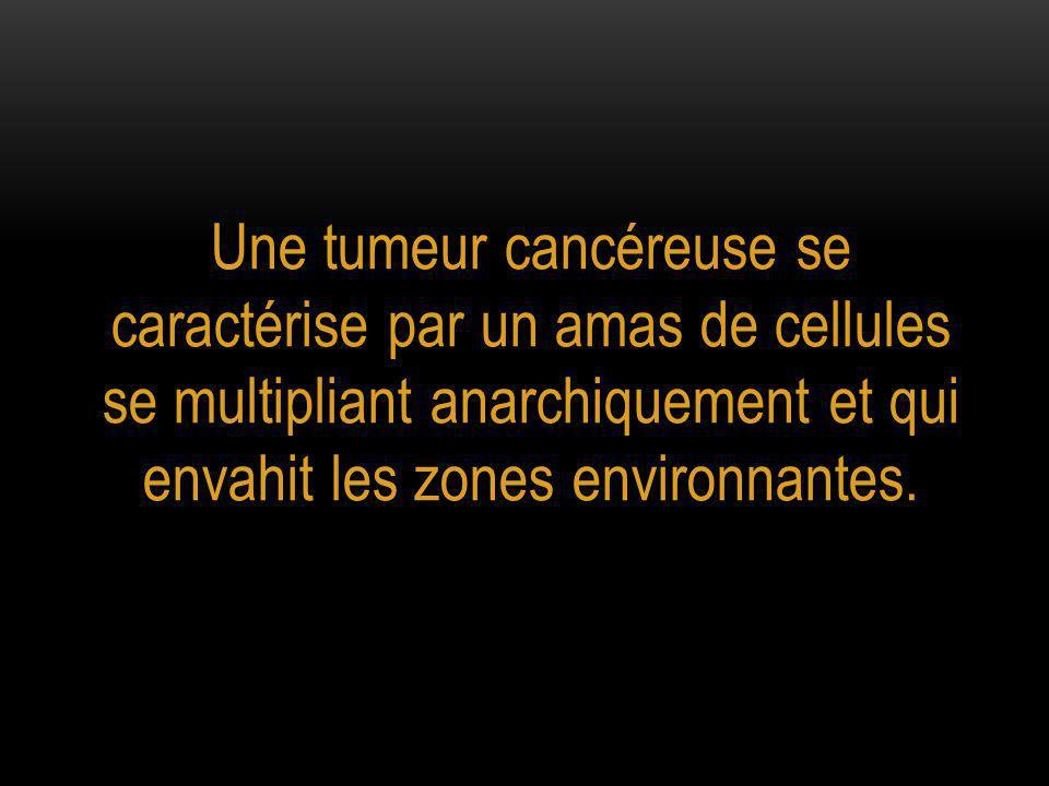 Une tumeur cancéreuse se caractérise par un amas de cellules se multipliant anarchiquement et qui envahit les zones environnantes.