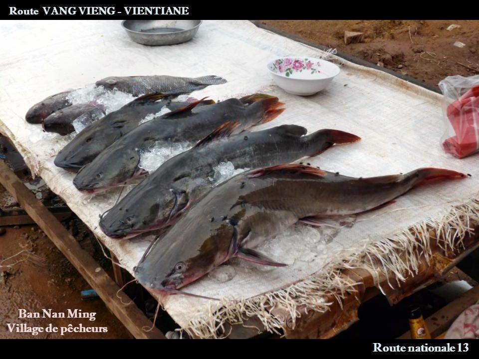 Route VANG VIENG - VIENTIANE Route nationale 13 Ban Nan Ming Village de pêcheurs
