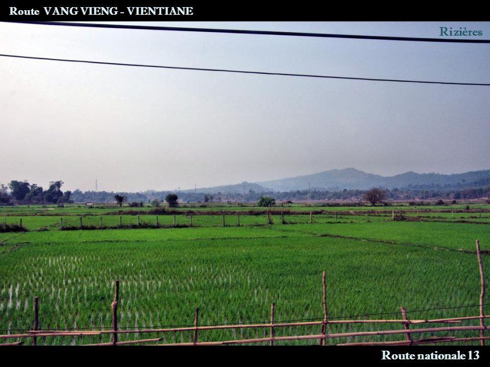Route VANG VIENG - VIENTIANE Route nationale 13 Rizières