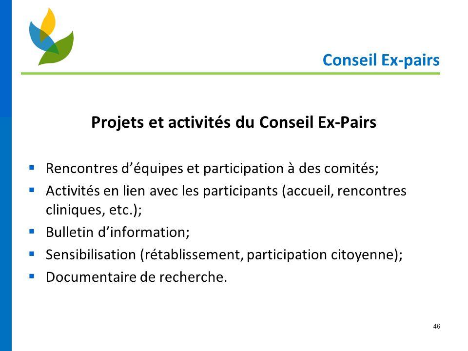 46 Conseil Ex-pairs Projets et activités du Conseil Ex-Pairs  Rencontres d'équipes et participation à des comités;  Activités en lien avec les parti