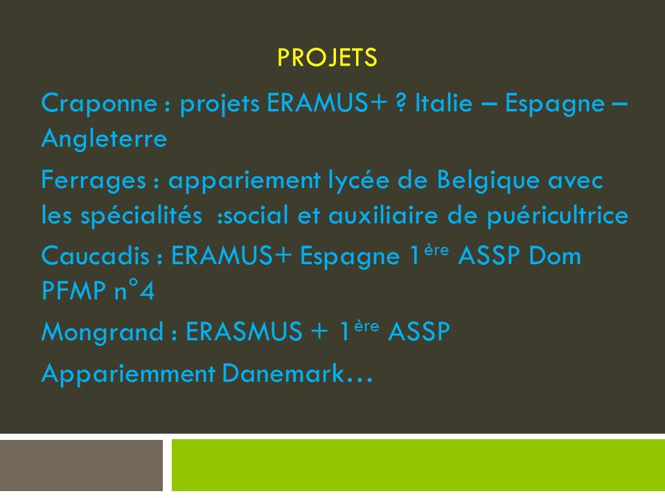 PROJETS Craponne : projets ERAMUS+ .