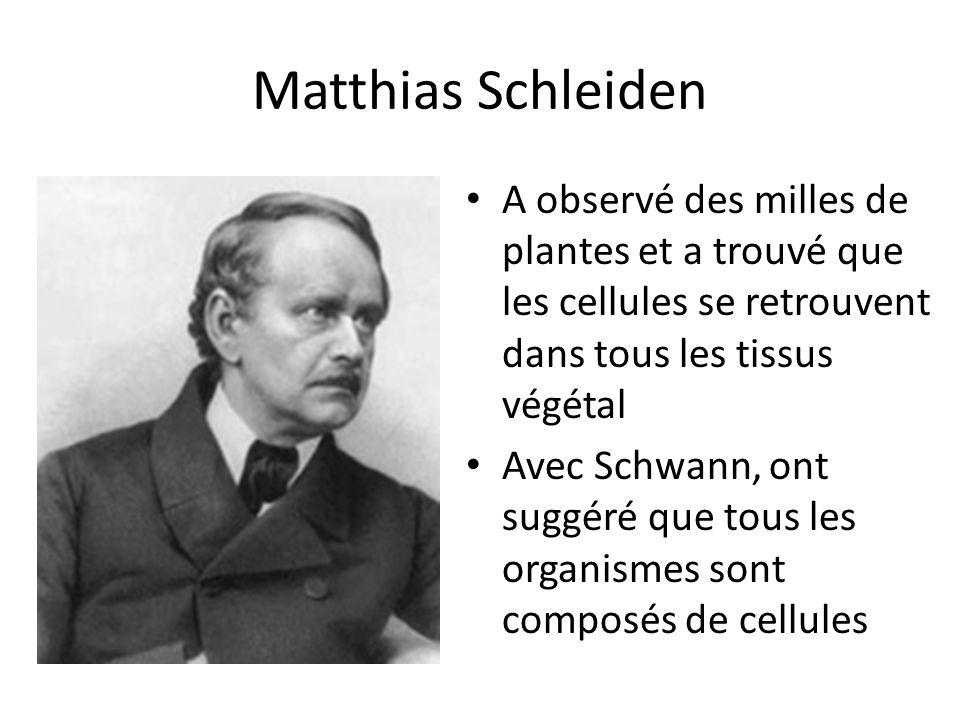 Matthias Schleiden A observé des milles de plantes et a trouvé que les cellules se retrouvent dans tous les tissus végétal Avec Schwann, ont suggéré que tous les organismes sont composés de cellules