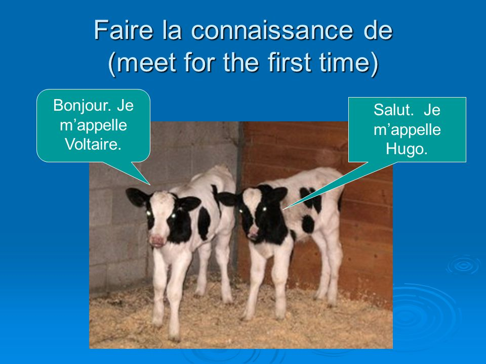 Faire la connaissance de (meet for the first time) Bonjour.