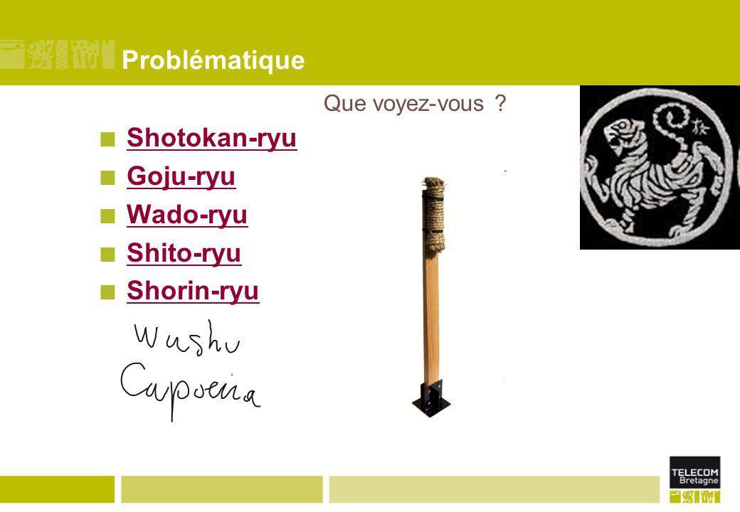 Problématique Shotokan-ryu Goju-ryu Wado-ryu Shito-ryu Shorin-ryu Que voyez-vous ?