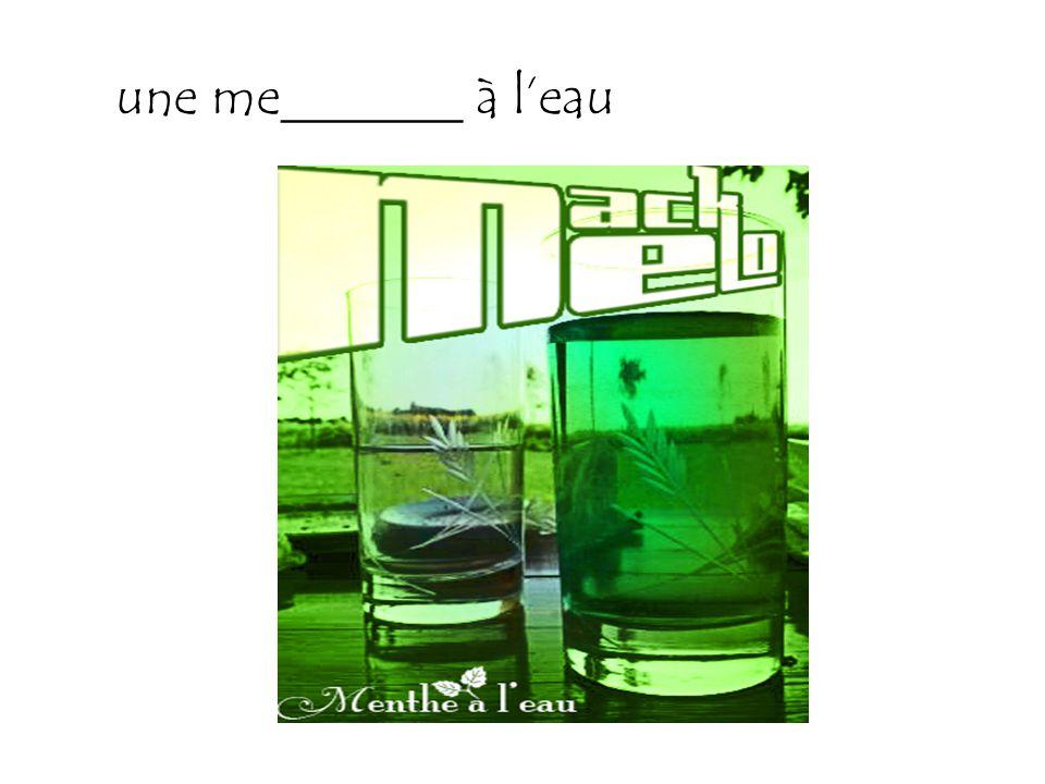 une me_______ à l'eau