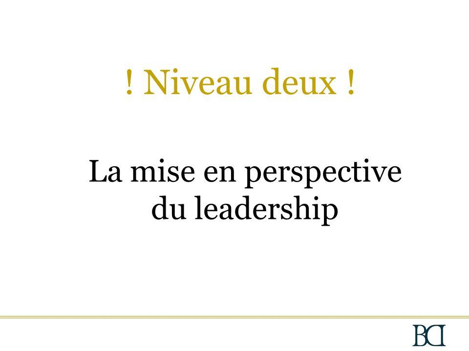 La mise en perspective du leadership ! Niveau deux !