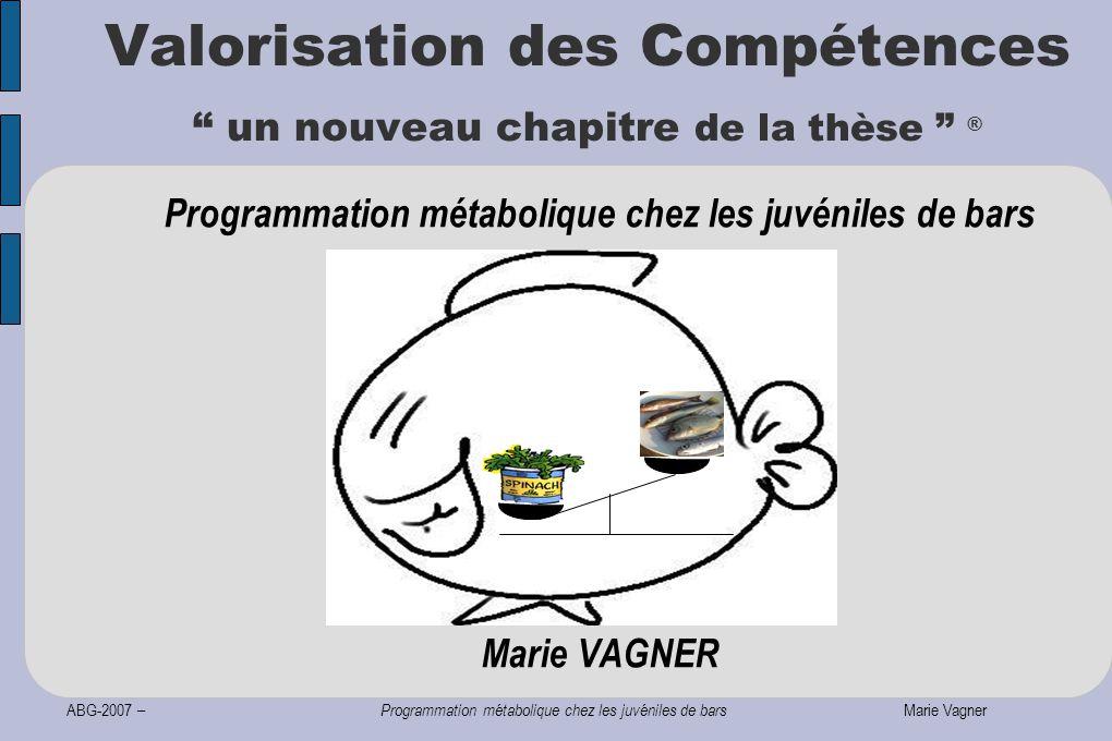 ABG-2007 – Programmation métabolique chez les juvéniles de bars Marie Vagner Programmation métabolique chez les juvéniles de bars Marie VAGNER Valorisation des Compétences un nouveau chapitre de la thèse ®
