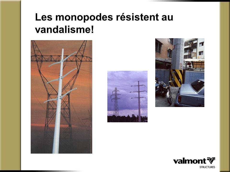 Les monopodes résistent au vandalisme!