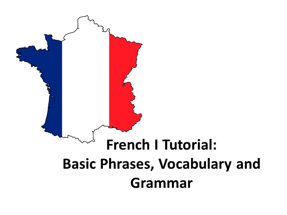 LES EXPRESSIONS DE BASE 1. BASIC PHRASES LES EXPRESSIONS DE BASE
