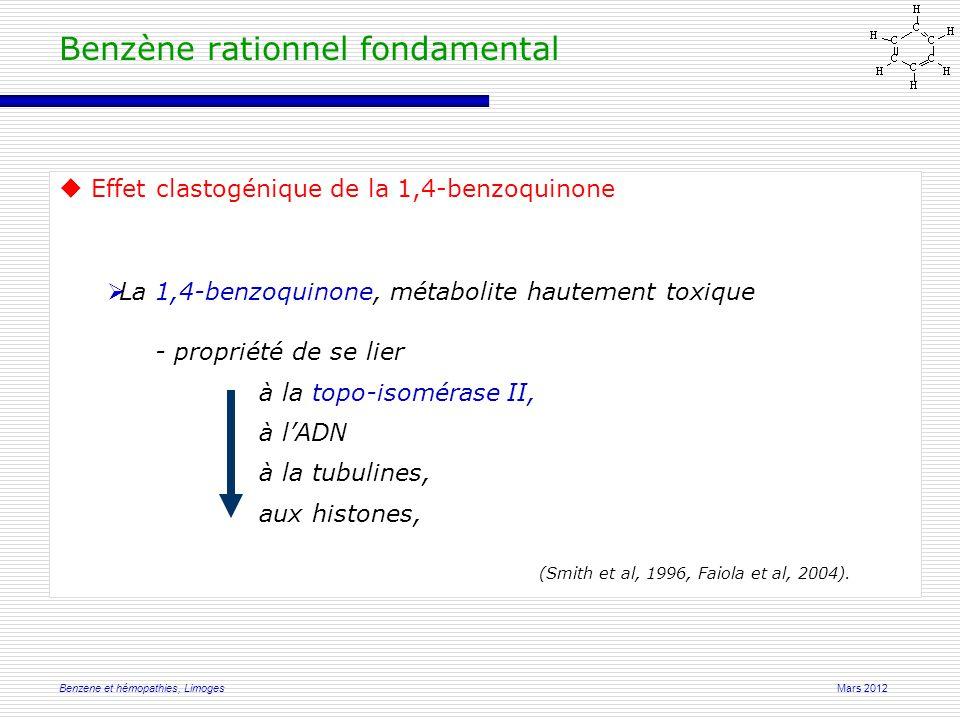 Mars 2012Benzene et hémopathies, Limoges Benzène rationnel fondamental  Effet clastogénique de la 1,4-benzoquinone  La 1,4-benzoquinone, métabolite hautement toxique - propriété de se lier à la topo-isomérase II, à l'ADN à la tubulines, aux histones, (Smith et al, 1996, Faiola et al, 2004).
