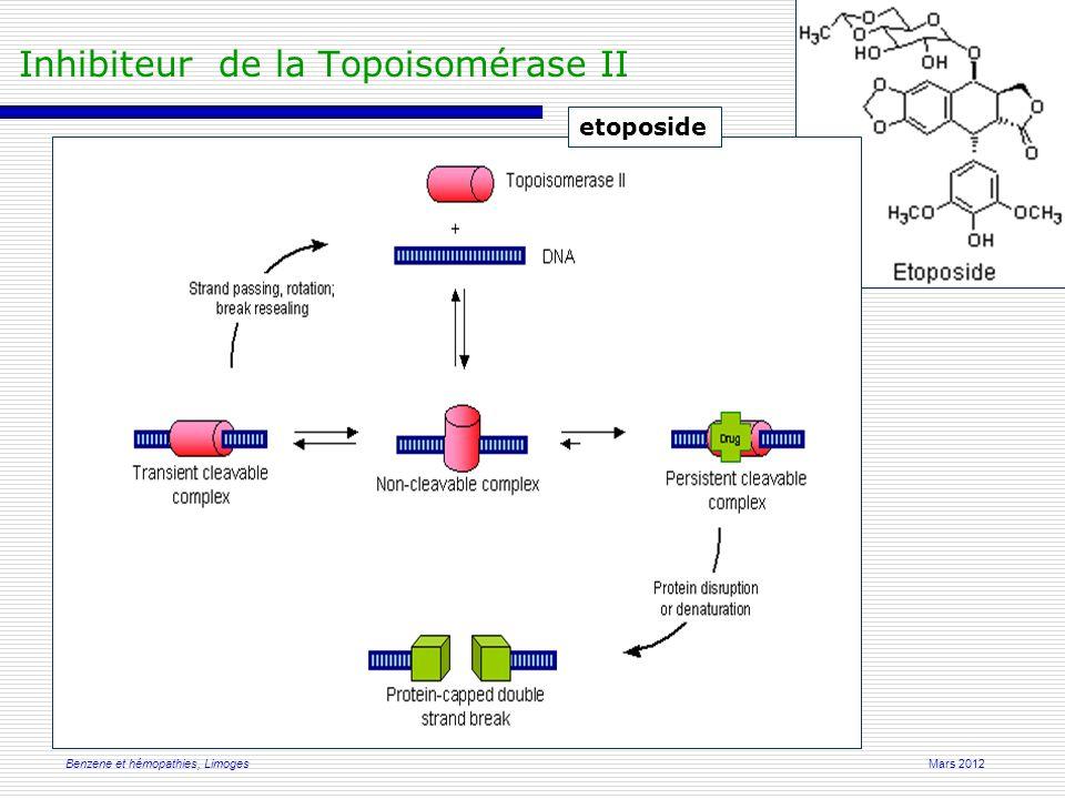 Mars 2012Benzene et hémopathies, Limoges Inhibiteur de la Topoisomérase II etoposide
