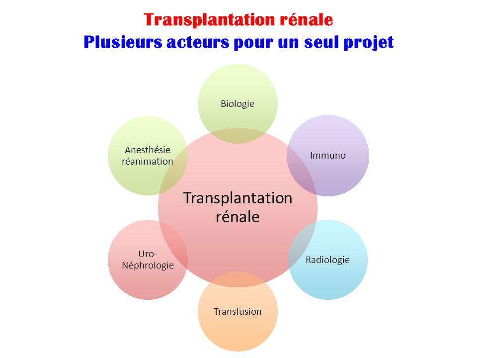 Transplantation rénale Biologie Immuno RadiologieTransfusion Uro- Néphrologie Anesthésie réanimation Transplantation rénale Plusieurs acteurs pour un