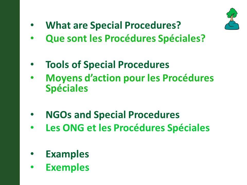 What are Special Procedures. Que sont les Procédures Spéciales.
