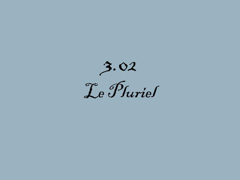 3.02 Le Pluriel