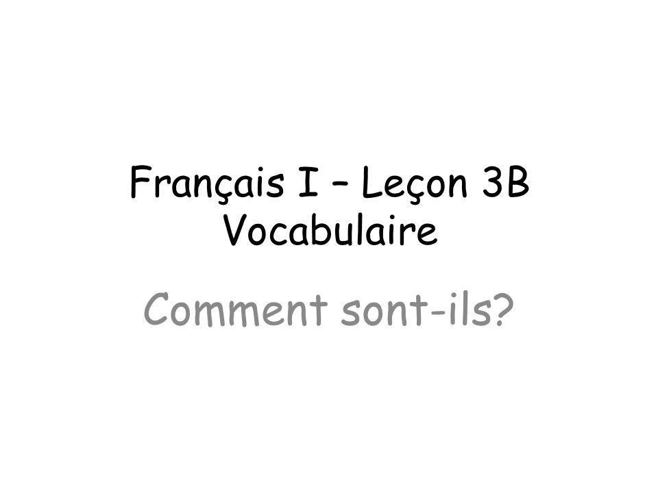 Français I – Leçon 3B Vocabulaire Comment sont-ils