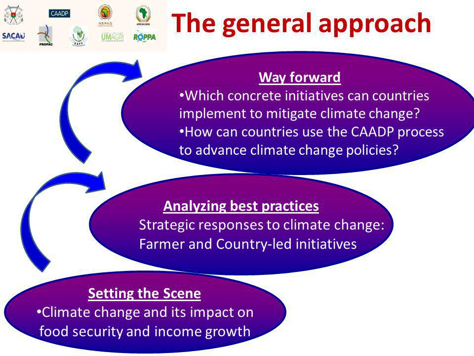 Parallel Sessions Country Strategies: Way forward by regions