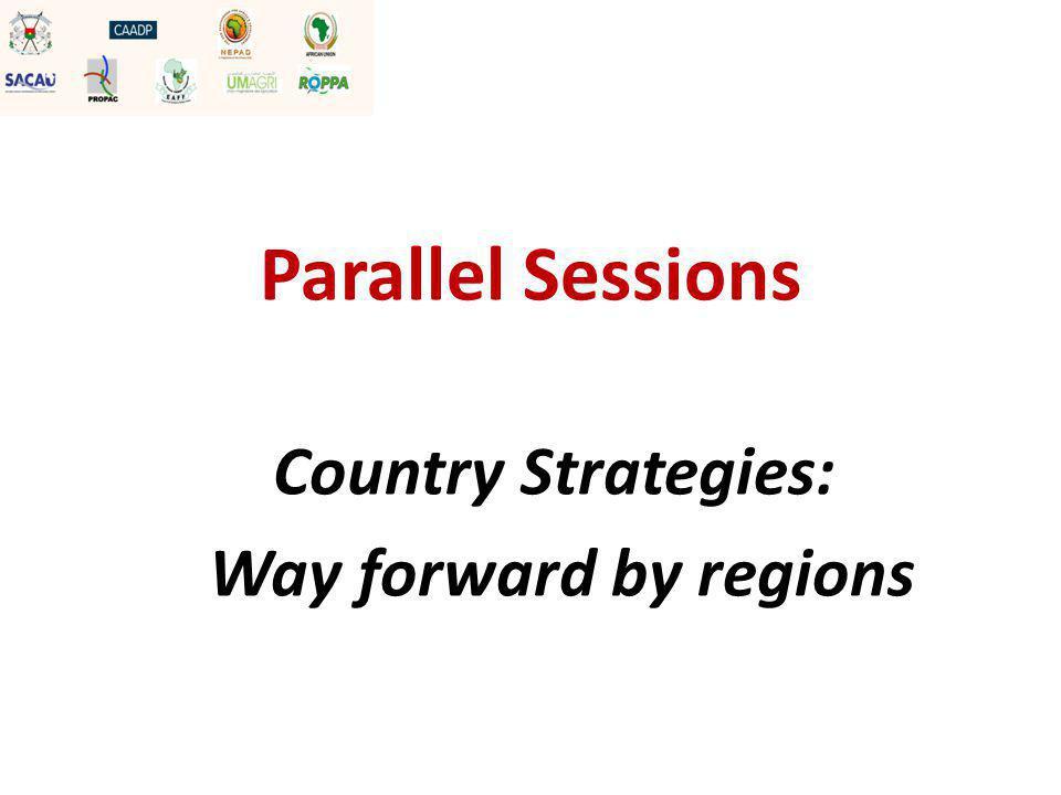 Termes de référence Dans votre groupe régional, developper le plan d'action de l'organisation régionale selon les termes de référence suivants: 1.Chaque pays a 5 minutes pour présenter leur plan d'action 2.Ensuite 10 minutes de questions – réponses sur le plan d'action
