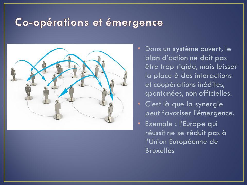 Dans un système ouvert, le plan d'action ne doit pas être trop rigide, mais laisser la place à des interactions et coopérations inédites, spontanées, non officielles.