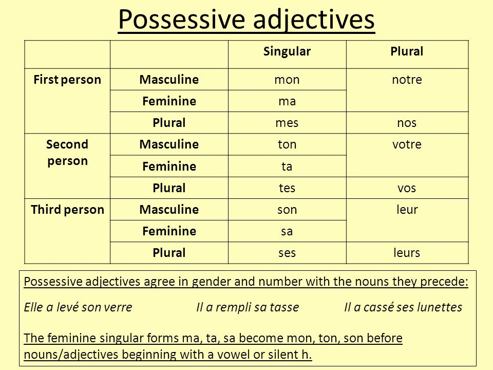 Possessive adjectives SingularPlural First personMasculinemonnotre Femininema Pluralmesnos Second person Masculinetonvotre Feminineta Pluraltesvos Third personMasculinesonleur Femininesa Pluralsesleurs Possessive adjectives agree in gender and number with the nouns they precede: Elle a levé son verreIl a rempli sa tasseIl a cassé ses lunettes The feminine singular forms ma, ta, sa become mon, ton, son before nouns/adjectives beginning with a vowel or silent h.