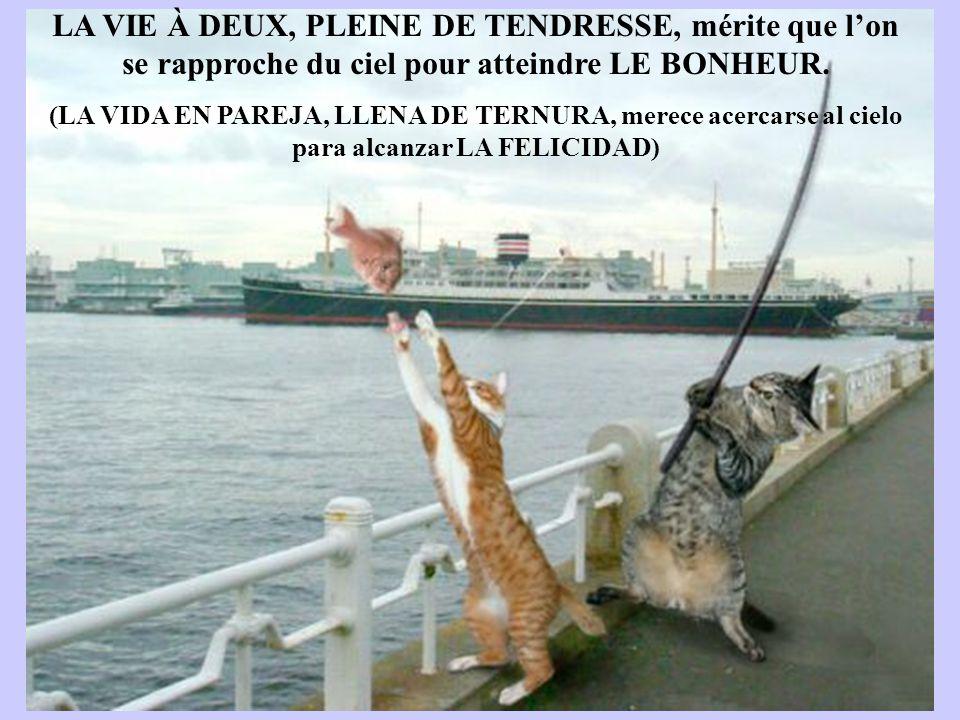 Les meilleures photos de L année 2005 D après NBC LA VIE À DEUX, PLEINE DE TENDRESSE, mérite que l'on se rapproche du ciel pour atteindre LE BONHEUR.
