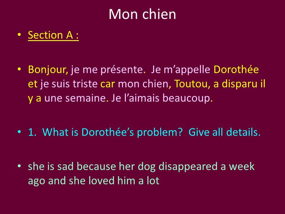 Mon chien Section A : Bonjour, je me présente. Je m'appelle Dorothée et je suis triste car mon chien, Toutou, a disparu il y a une semaine. Je l'aimai