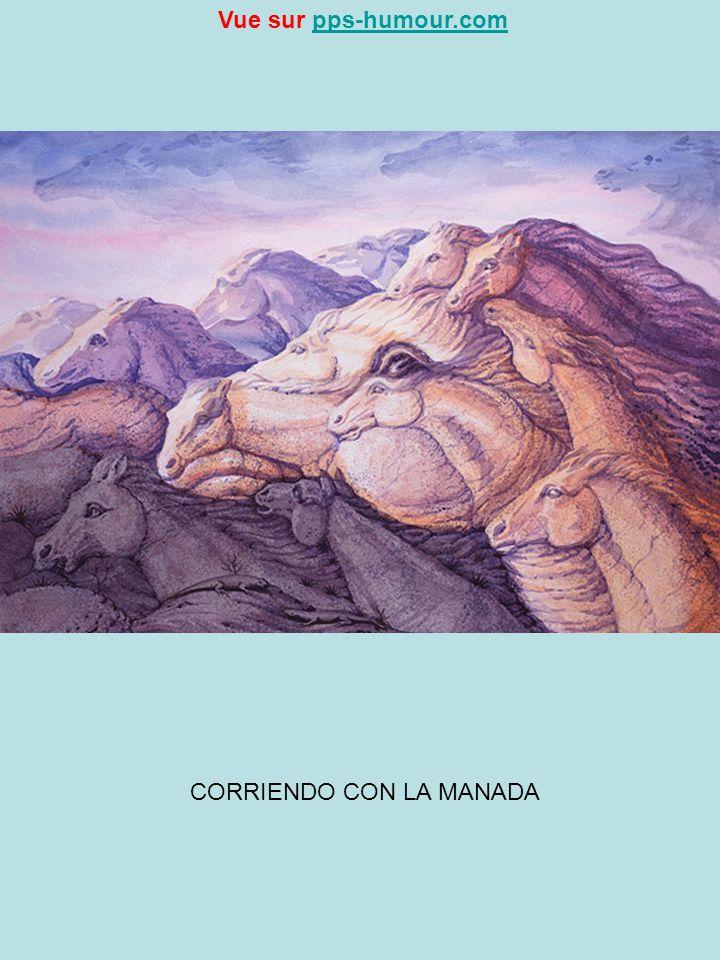CORRIENDO CON LA MANADA Vue sur pps-humour.compps-humour.com