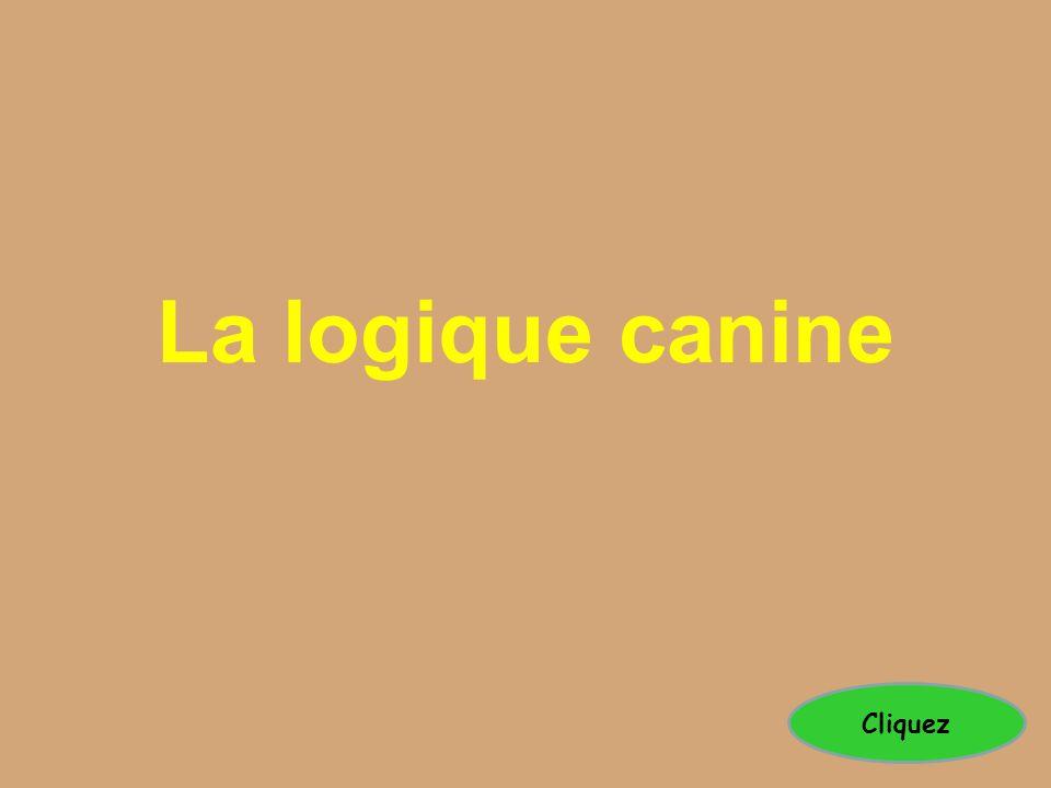 La logique canine Cliquez