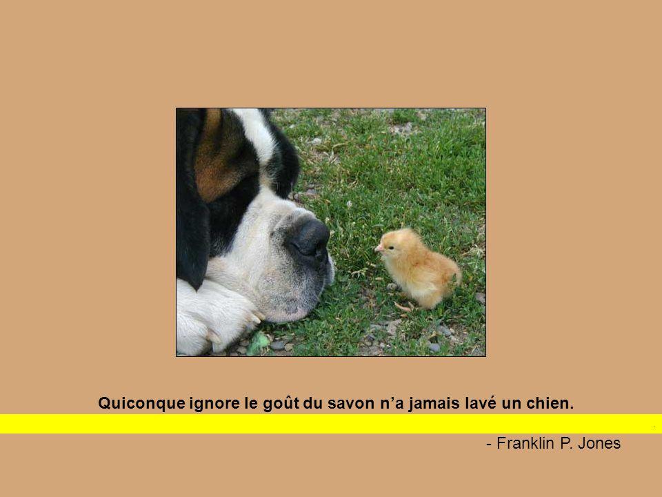 Les chiens aiment leurs amis et mordent leurs ennemis, contrairement aux gens qui sont incapables d'un amour pur et qui mélangent amour et haine Dogs