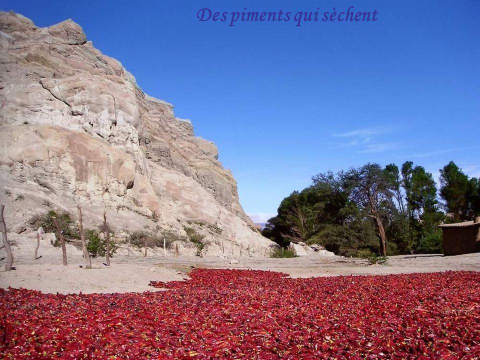Nuage sur la vallée El Chaten