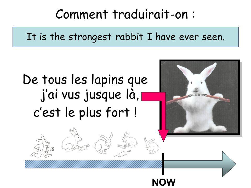 De tous les lapins que j'ai vus jusque là, c'est le plus fort .