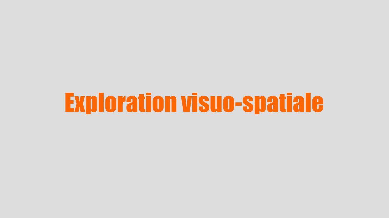 Exploration visuo-spatiale