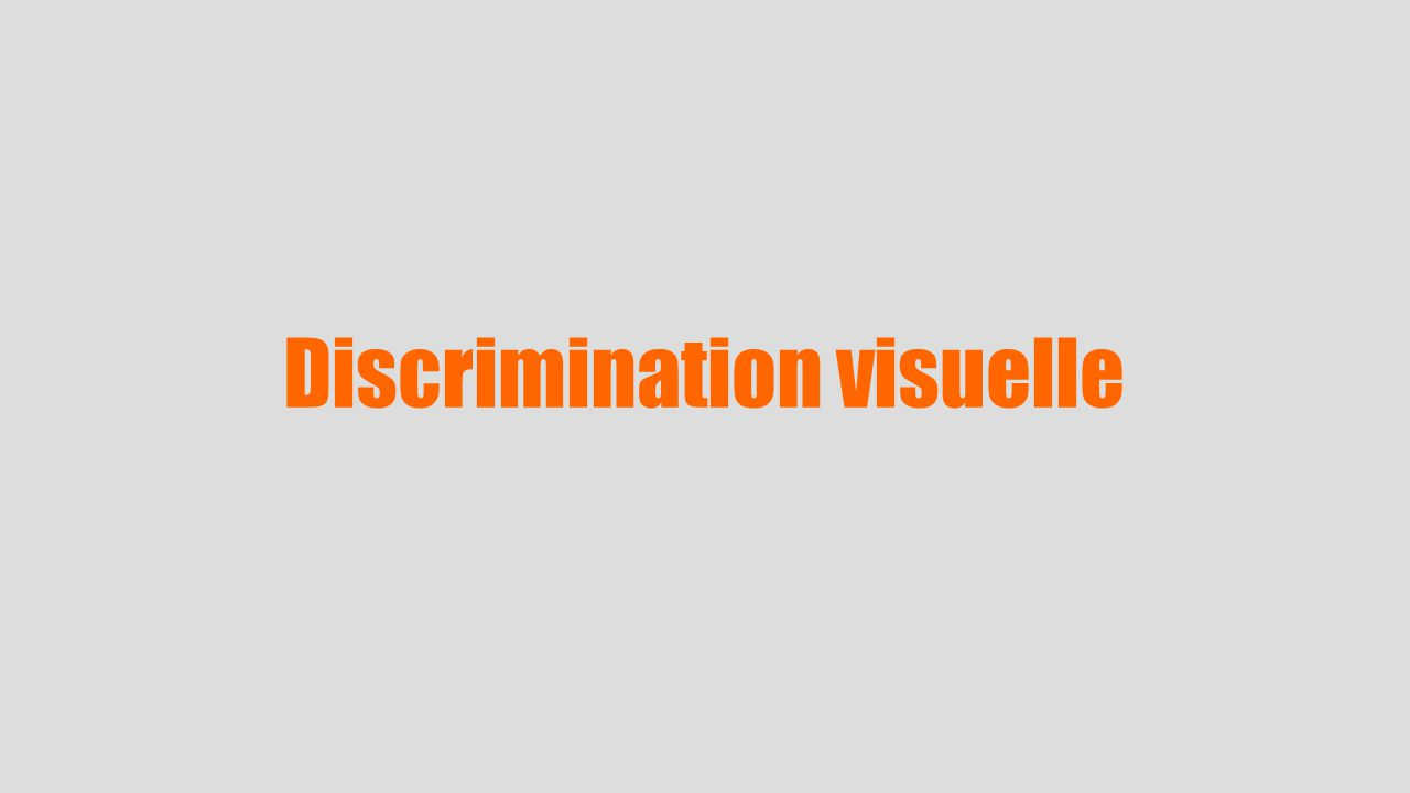 Discrimination visuelle