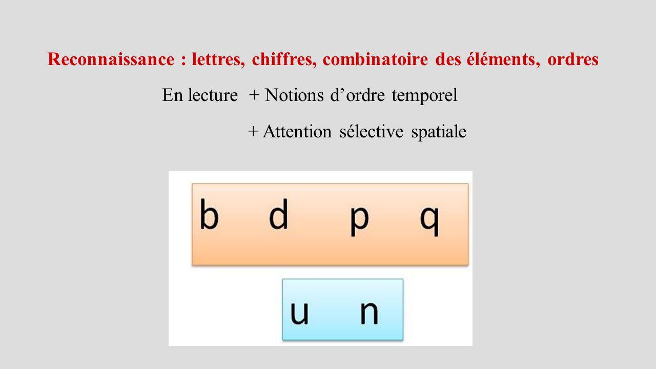 Reconnaissance : lettres, chiffres, combinatoire des éléments, ordres En lecture + Notions d'ordre temporel + Attention sélective spatiale