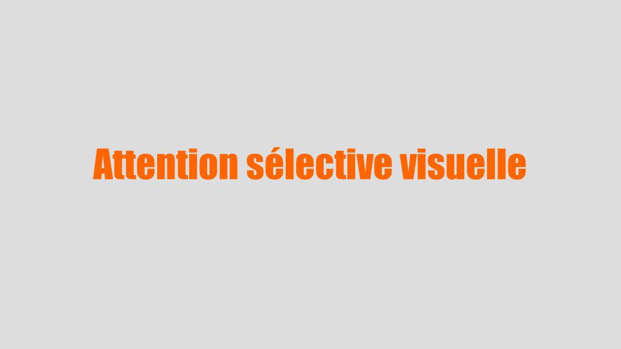 Attention sélective visuelle
