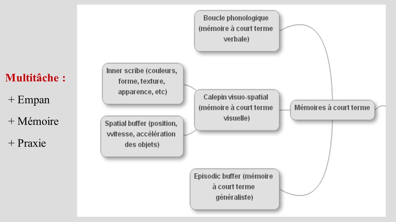 Multitâche : + Empan + Mémoire + Praxie