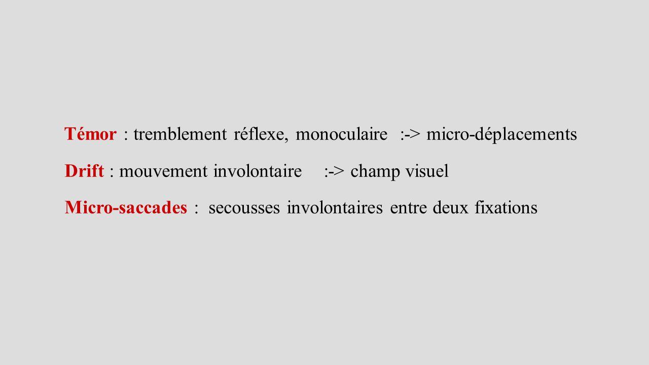 Témor : tremblement réflexe, monoculaire :-> micro-déplacements Drift : mouvement involontaire :-> champ visuel Micro-saccades : secousses involontair