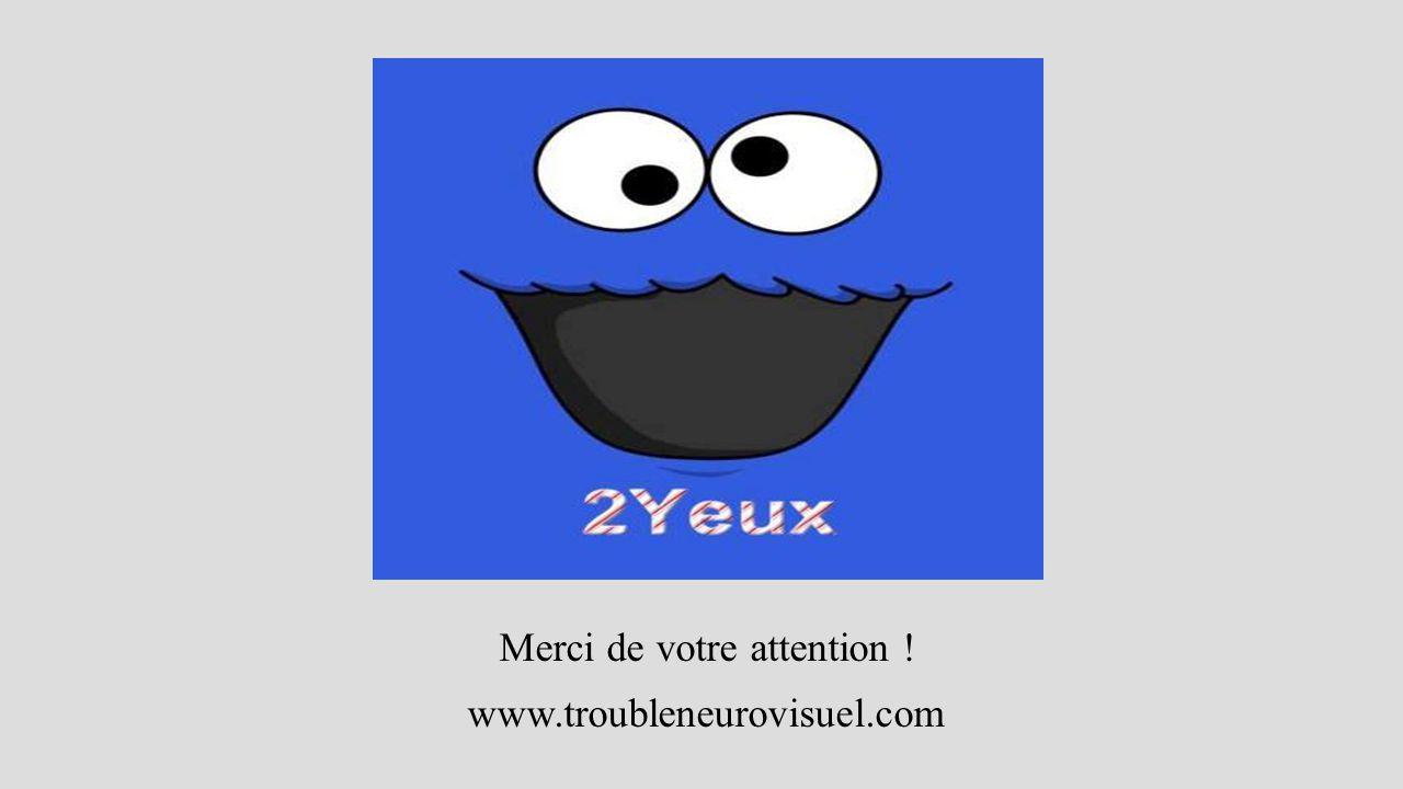 Merci de votre attention ! www.troubleneurovisuel.com