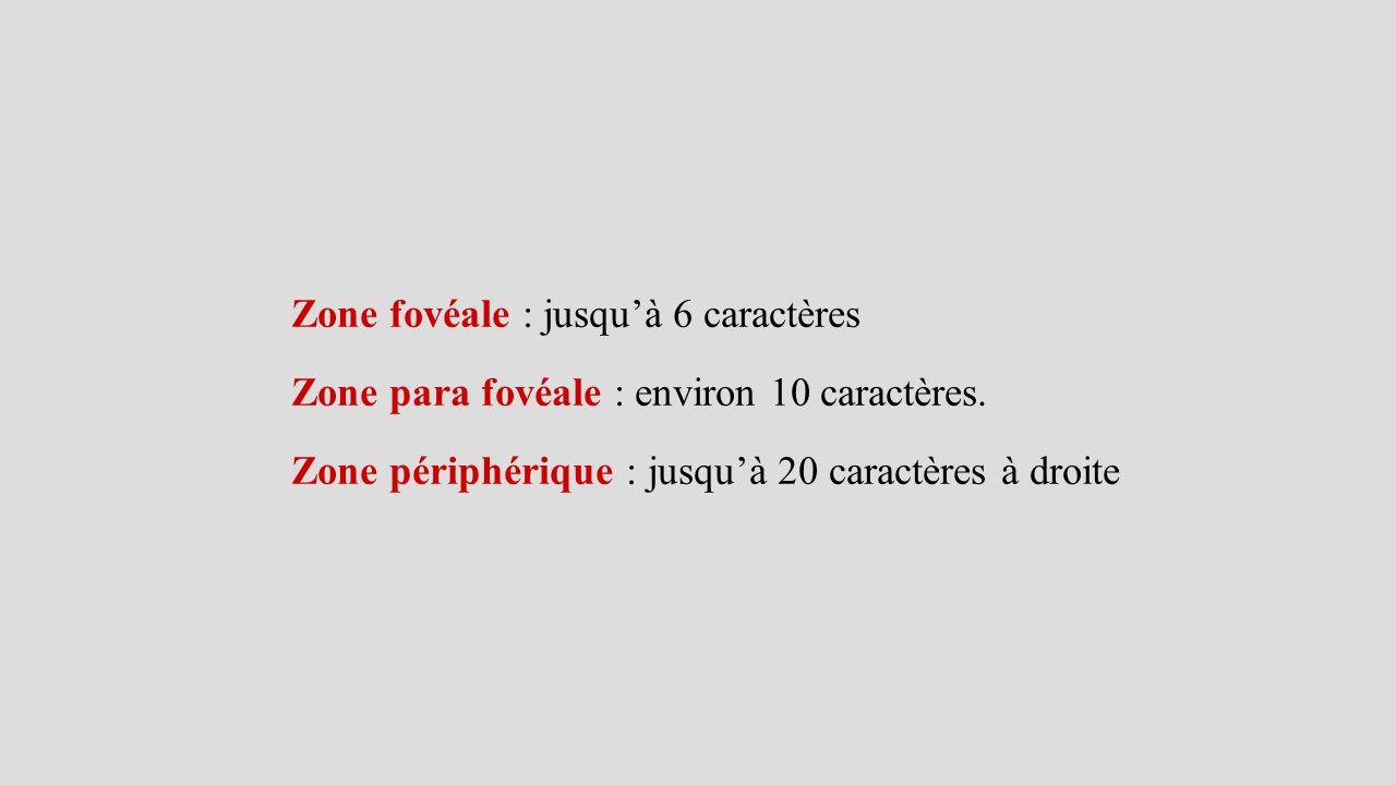 Zone fovéale : jusqu'à 6 caractères Zone para fovéale : environ 10 caractères. Zone périphérique : jusqu'à 20 caractères à droite