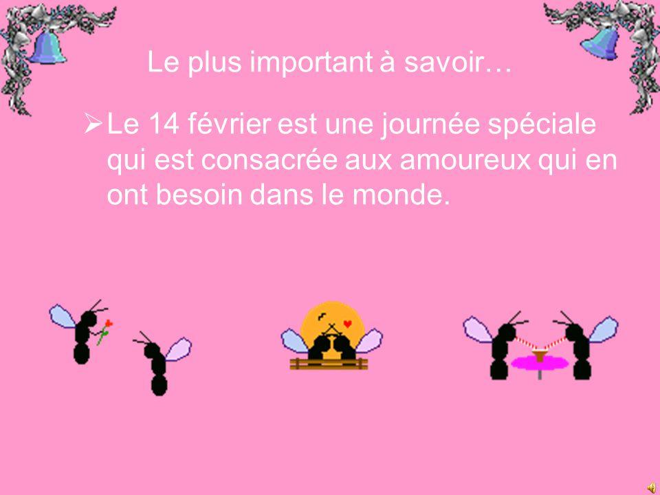 Le plus important à savoir…  Le 14 février est une journée spéciale qui est consacrée aux amoureux qui en ont besoin dans le monde.