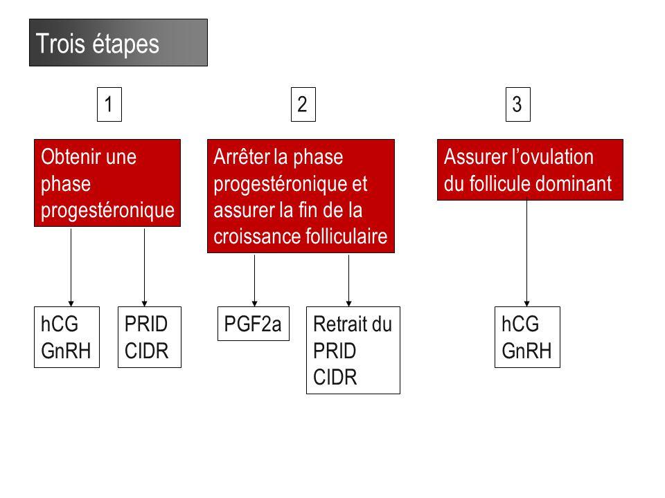 32 Trois étapes Obtenir une phase progestéronique Assurer l'ovulation du follicule dominant Arrêter la phase progestéronique et assurer la fin de la croissance folliculaire hCG GnRH PRID CIDR PGF2aRetrait du PRID CIDR hCG GnRH 123