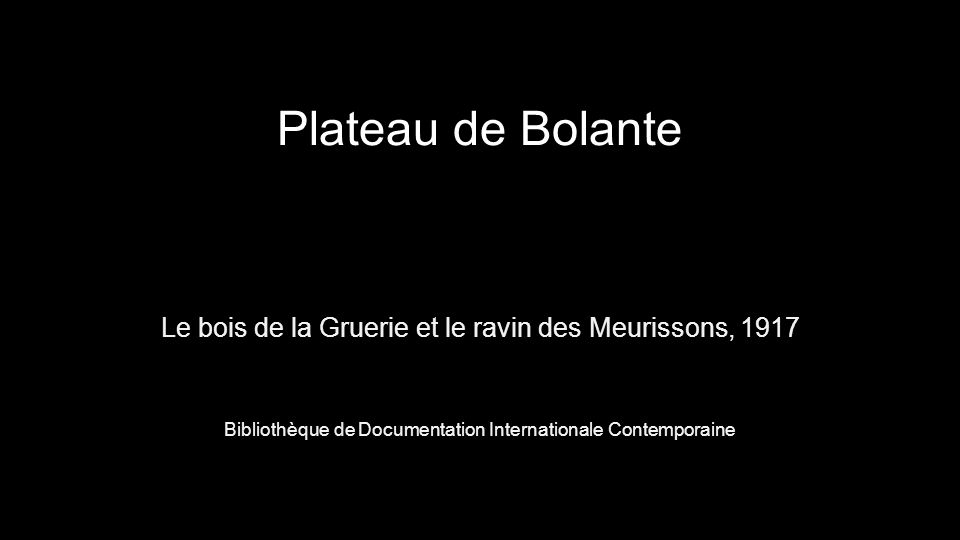 Plateau de Bolante Le bois de la Gruerie et le ravin des Meurissons, 1917 Bibliothèque de Documentation Internationale Contemporaine
